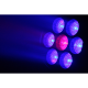 Lyre FOS WASH 7 X 15 RGBW ZOOM